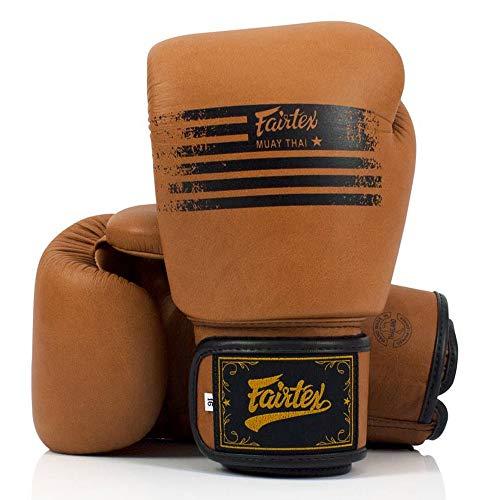 Fairtex Muay Thai Boxing Gloves BGV21 Legacy MMA UFC K1 Kick Boxing Training Gloves (10 oz)