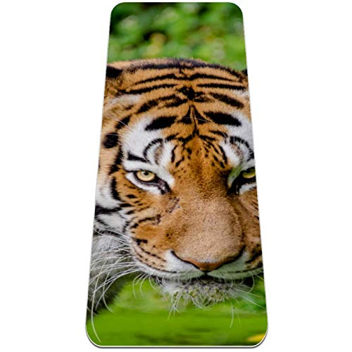 Eslifey Cat Tiger Violent - Esterilla de yoga gruesa antideslizante para mujeres y niñas, tapete de ejercicio suave para pilates (72 x 24 pulgadas, 1/4 pulgadas de grosor)