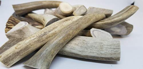 bully sticks elks Bullysticks Organic Antlers for Dogs, Natural Elk Antlers for Dogs, Nutritious, Long Lasting Chews, USDA Approved (1 Pound of 4