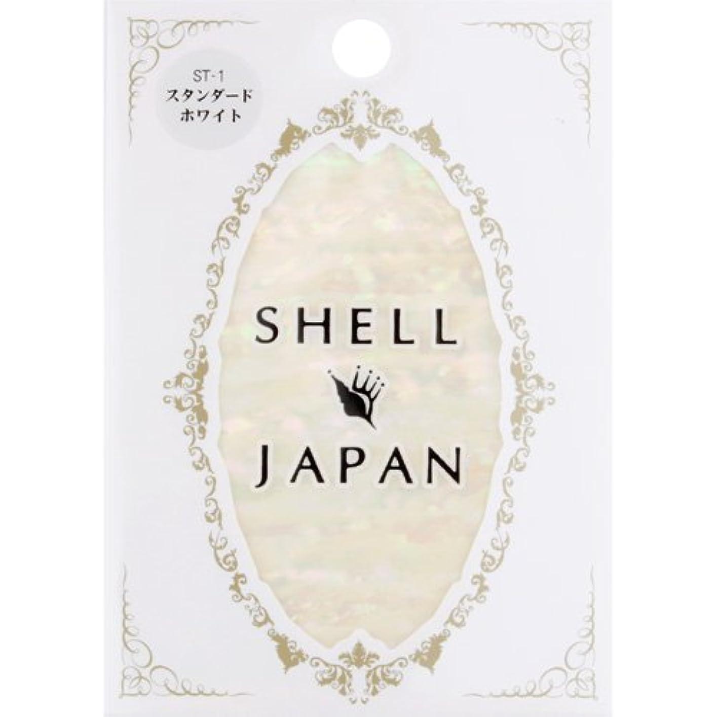 時間見分ける複雑SHELL JAPAN ?????? ST???? 【アート】