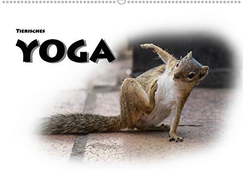 Tierisches Yoga (Wandkalender 2020 DIN A2 quer)