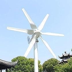 800W 12V 24V 48V Windkraftanlage Windturbine Mit MPPT Controller Horizontale 3 Phase AC Windgenerator Für Home bauernhof Straße Lampen 6 Blätter Windmühle (12V, 800W)