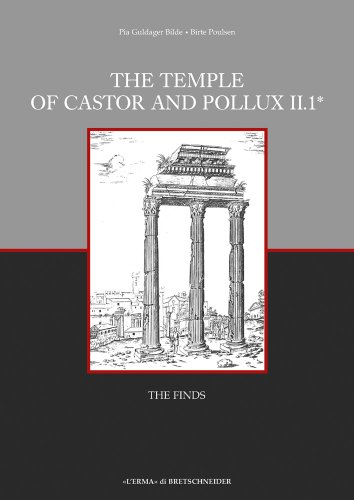 The Temple of Castor and Pollux II,1: The Finds (Occasional Papers of the Nordic Institute in Rome) (Italian Edition)