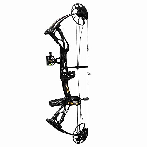 sanlida Archery Dragon X8 Hunting Archery Compound Bow Package/Limbs Made in USA/18-31 Draw Length/0-70Lbs Draw Weight/Up to 310FPS/1 Year Warranty (BlackBeginnerPackage)