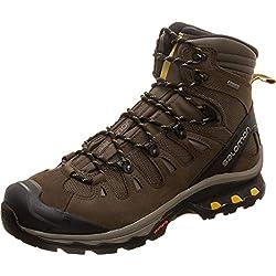 Salomon Men's Quest 4D 3 GTX Backpacking Boots, Wren/Bungee Cord/Green Sulphur, 7