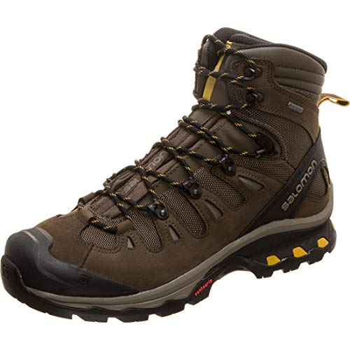 Salomon Men's Quest 4D 3 GTX Backpacking Boots, Wren/Bungee Cord/Green Sulphur, 11