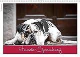Hunde-Spruchreif (Wandkalender 2021 DIN A3 quer)