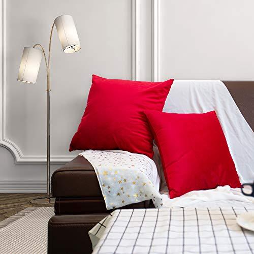 Mangsen Juego de 2 fundas de cojín de 45 x 45 cm, decorativas de terciopelo, cojín lumbar, funda con cremallera oculta para sofá, dormitorio (rojo)