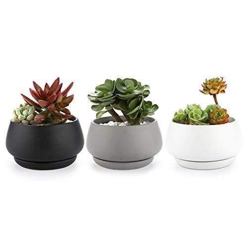 T4U Vasetti per Piantine Ceramica con Vassoio Set di 3, Piccola Vasi in Ceramica per Piante Grasse da Interno Vasi Cactus per Succulente Piccoli