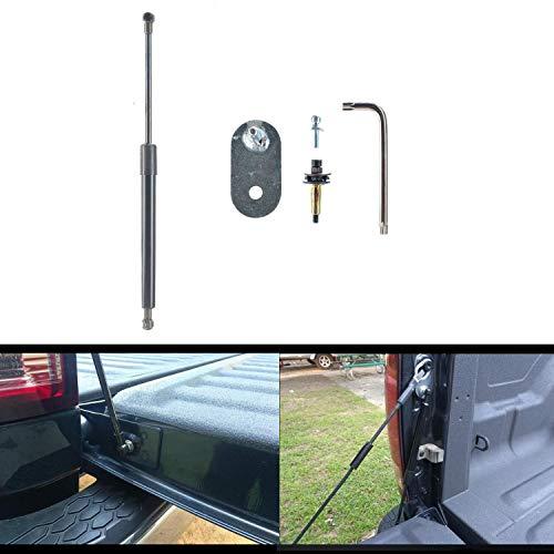 Truck Tailgate Assist Shock Struts DZ43200 Fits 2004-2014 Ford F-150 Pickup 2006-2008 Lincoln Mark LT