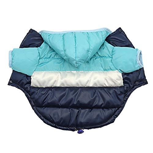 Manteau de chiot de manteau d'animal familier de vêtements chauds d'hiver de chien pour l'habillement de hoodies d'animal familier de Chihuahua de Bulldog pour de petits chiens Yorkshire, bleu, 12