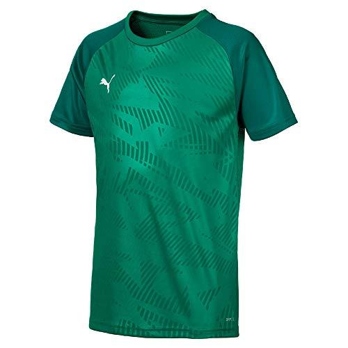 PUMA Kinder Cup Jersey Core Trainingsshirt, Pepper Green/Alpine Green, 164