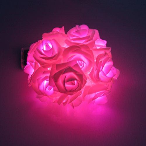 Zantec 20 Batterie LED Op¨¦r¨¦e Rose fleur de lumi¨¨res (Bleu)