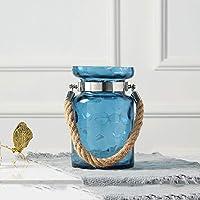 Qeepenl アメリカのガラスの花瓶透明なガラスの花瓶水耕養殖花瓶リビングルームのベッドルームの花の装飾水耕コンテナデコレーション花瓶 (色 : 青)
