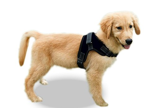 Copatchy No Pull Reflective Adjustable Dog Harness with Handle (Medium Black)