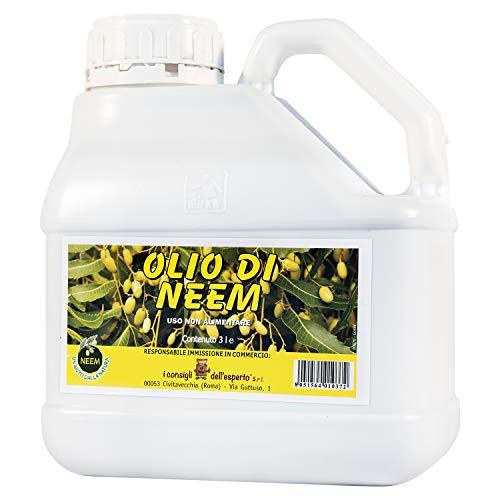 I Consigli Dell'Esperto Olio di Neem