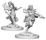 D&D Nolzurs Marvelous Unpainted Miniatures:...