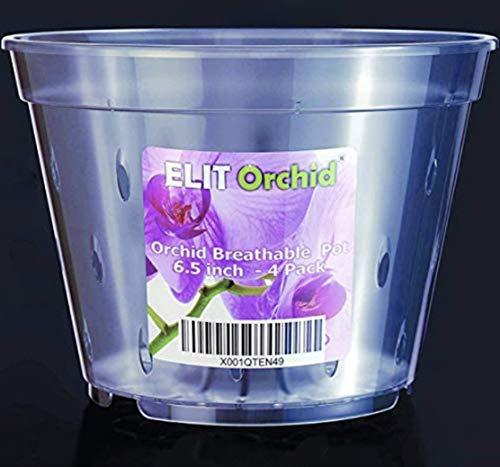 Maceta de orquídeas con agujeros – Maceta de plástico transparente para todo tipo de orquídeas – juego de 4 macetas de 170 mm de diámetro