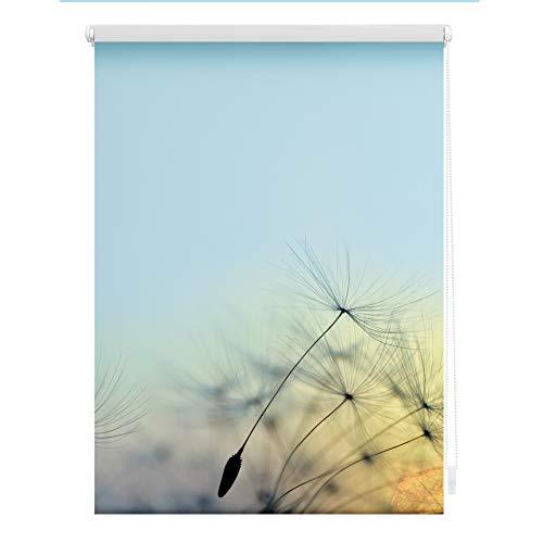 Lichtblick KRT.060.150.355 Rollo Klemmfix, ohne Bohren, Blickdicht, Pusteblume - Blau 60 x 150 cm (B x L)