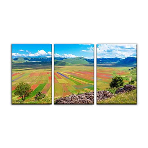 "Gracelapin Modern Canvas Painting castelluccio di norcia, 2018 Umbria, Italy Cultivated Field Wall Art Artwork Decor Printed Oil Painting Landscape Home Office Bedroom Framed Decor (16""x24""x3pcs)"