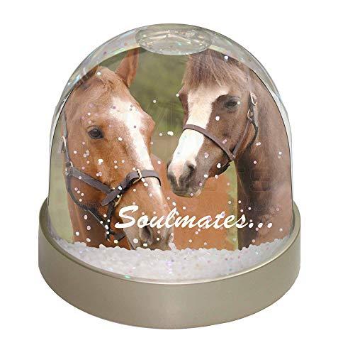 Advanta Pferde 'Soulmates' Sentiment Foto Snow Globe Schneekugel Strumpffüller Geschenk, Mehrfarbig, 9,2x 9,2x 8cm