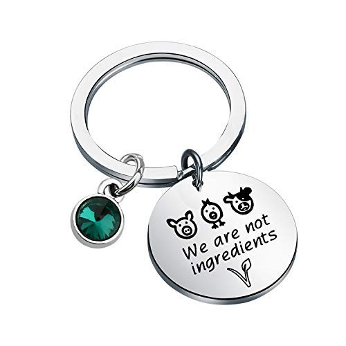 Vegetarian Jewelry Vegan Bracelet We Are Not Ingredients Animal Rights Bracelet Gift For Vegan Veganism Gift (Veganism Charm Keychain)