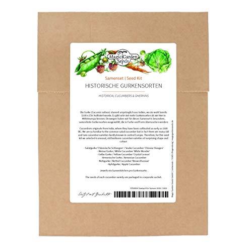 Varietà storiche di cetrioli - set di semi con 6 varietà rare e originali