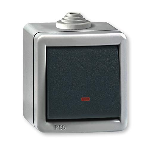 Interruptor de cambio con luz brillante 10AX/250V~ / IP 55 (acabado de metal), Gris