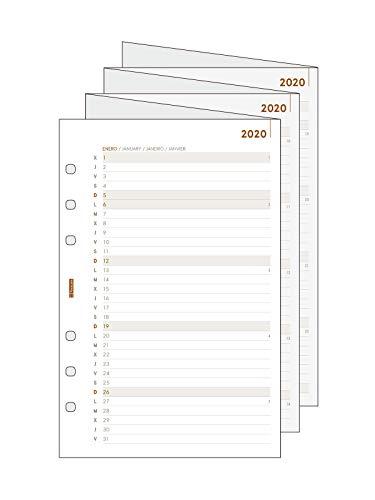 Finocam - Recambio Anual - Planificación Desplegable 2020 Open R596 español, 500-117x181 mm