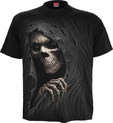 Spiral Direct Damen Wings of Wisdom-Lace Layered Cap Sleeve Top T-Shirt, Schwarz (Black 001), 34 (Herstellergröße: Small)