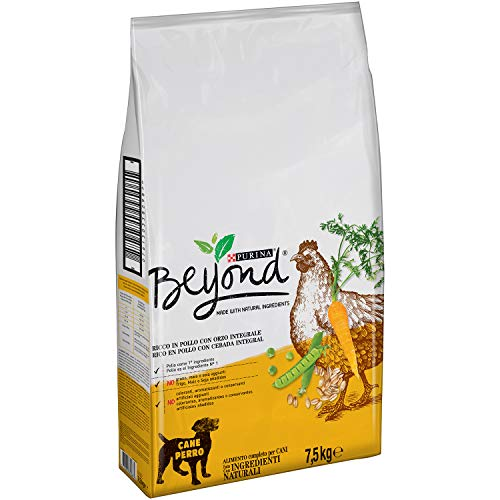 Purina Beyond Pienso Natural para Perro Adulto Pollo y Cebada Integral 7,5 Kg