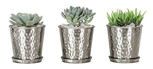 3-Set Monarch Abode Flower Succulent Pots Planter Only $6.81 (Retail $29.15)