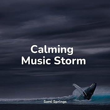 Calming Music Storm