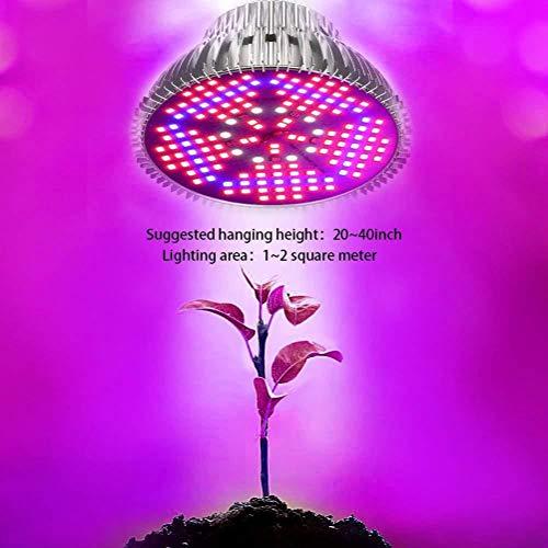 Led Pflanzenlampe Pflanzenlicht Pflanzenleuchte Wachstumslampe Grow Lampe Zimmerpflanzen für Gewächshaus Sämlinge und Sukkulenten Gartenbau,100W