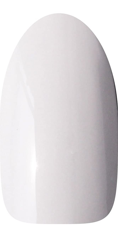 複製する生産性中級sacra カラージェル No.039 冬雲