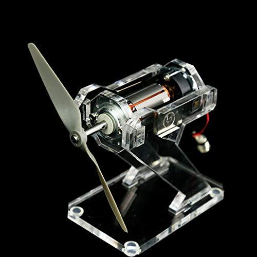 MYAMIA Cepillado DC Motor Modelo De Demostración 12V Experimento De Física Levitación Magnética Educación Modelo Tecnología Pequeños Juguetes Regalo