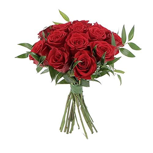 KENTIS - Bouquet di 12 Rose Rosse - Mazzo di Fiori Freschi a Domicilio in Italia - Rose Vere Regalo