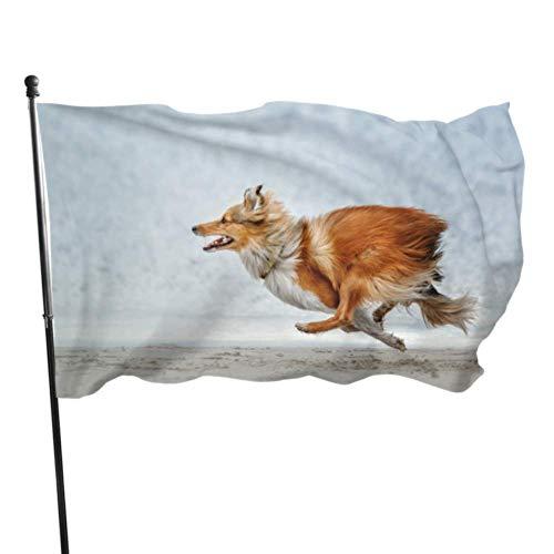 GOSMAO Bandera de jardín Running Sheepdog Color Vivo y Resistente a la decoloración UV Bandera de Patio de Doble Costura Bandera de Temporada Bandera de Pared 150X90cm