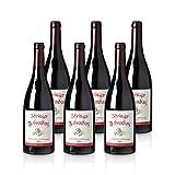 Spätburgunder,Barrique' - Ihringer Fohrenberg 2018 | Rotwein aus Deutschland | Trocken & Rot | WBK Glatt | Samtig & Kräftig im Geschmack, Paket mit:6 Flaschen