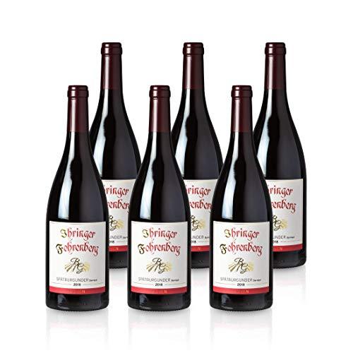 Spätburgunder Barrique - Ihringer Fohrenberg 2018 | Rotwein aus Deutschland | Trocken & Rot | WBK Glatt | Samtig & Kräftig im Geschmack (6x 0,75l)