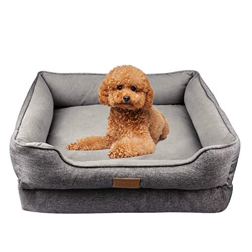 Onarway Dog Bed for Puppy Doggie Luxurious Short Granular velvet Pet Sofa Soft Breathable Full Cotton With Detachable Cotton Cushion (M (60x50x20cm))