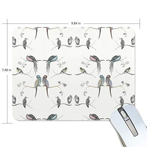 Preisvergleich Produktbild Mauspad MalpLENA Vogel Zweig Mauspad Premium texturiert Anti-Rutsch-Gummi Unterlage Mauspad für Laptop,  Computer und PC