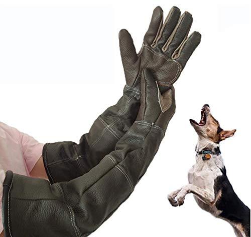 Guantes para manejo de animales, guantes anti-mordidas / arañazos para manejo de animales, guantes de cuero seguros y duraderos para perros, gatos, aves, serpientes, animales salvajes y guantes de jar