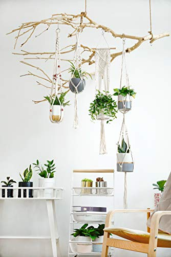 POTEY 640101 4-Pack Macrame Plant Hangers with 8 Hooks, Hanging Planters for Indoor Outdoor Plants Handmade Cotton Rope Hanging Planters Set Flower Pots Holder Stand, Boho Home Decor(Pot NOT Included)