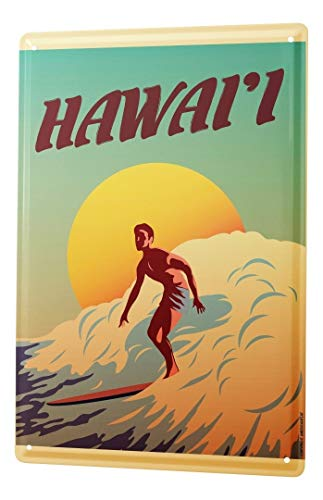 LEotiE SINCE 2004 Blechschild Dekoschild Küche Garage Nostalgie Wandschild Surfer Surfbrett Hawaii Sonne 20X30 cm