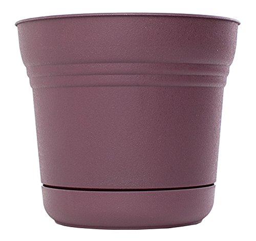 Bloem Vase Saturn 25,4 cm Couleur : exotique