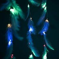 LED DIYフェザーカーテンは、リモートコントロール付きのUSBストリングライトホームを点灯します店舗 窓 オープンエアのバルコニーライトのクリスマスハロウィーンパーティーの装飾