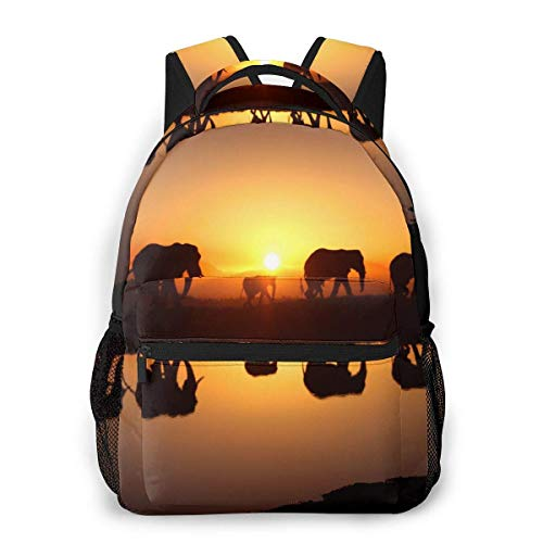 Lawenp Multifunctional Casual Backpack,Fashion Trend Knapsack,Cute Backpack11.5 X 16'''' X 8'''' African Elephant