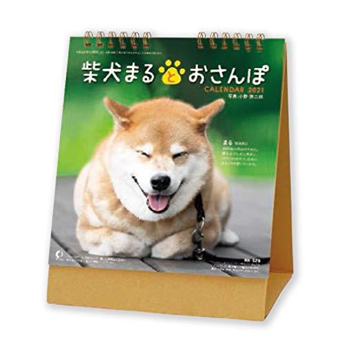 新日本カレンダー 2021年 カレンダー 卓上 柴犬まるとおさんぽ NK8529