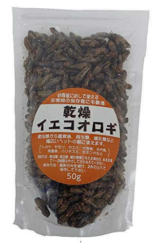 乾燥イエコオロギ 50gamazon参照画像